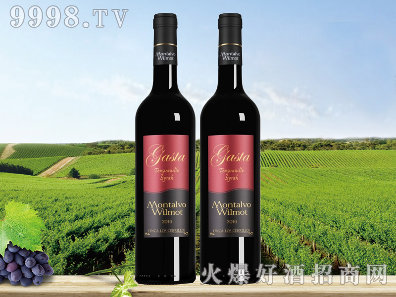 咖斯达添普兰尼洛西拉红葡萄酒-红酒招商信息