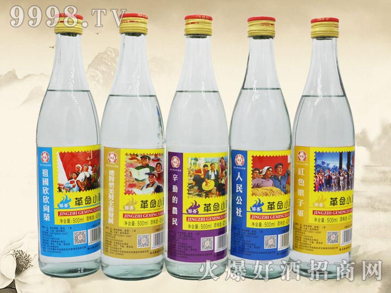 衡泰革命小酒-白酒招商信息