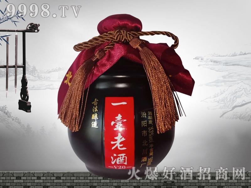 一壶老酒珍品坛装单瓶装