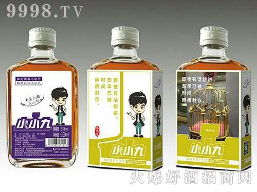 小小九红枣枸杞配制酒(黄标)35度100ml