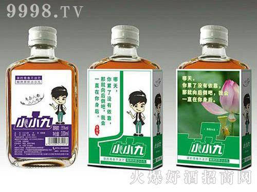 小小九红枣枸杞配制酒(绿标)35度100ml