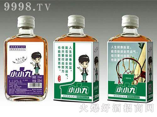 小小九红枣枸杞配制酒(墨绿标)35度100ml