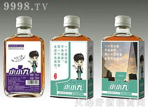小小九红枣枸杞配制酒(浅绿标)35度100ml