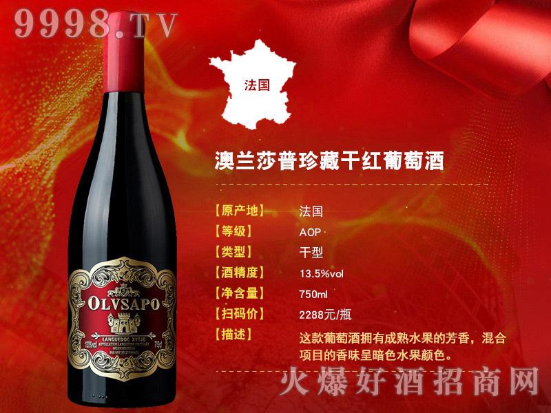 进口干红葡萄酒系列-(11)