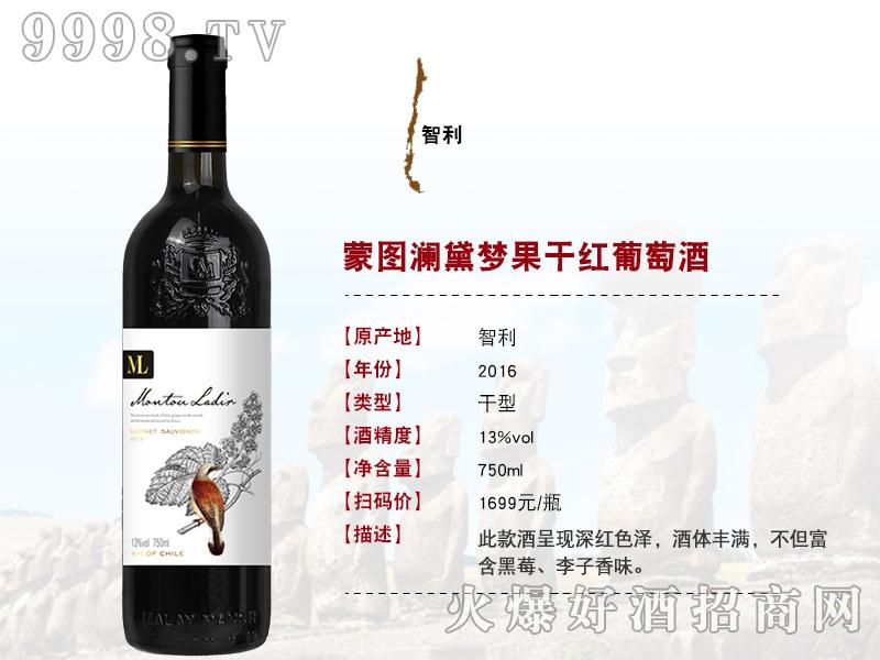 进口干红葡萄酒1