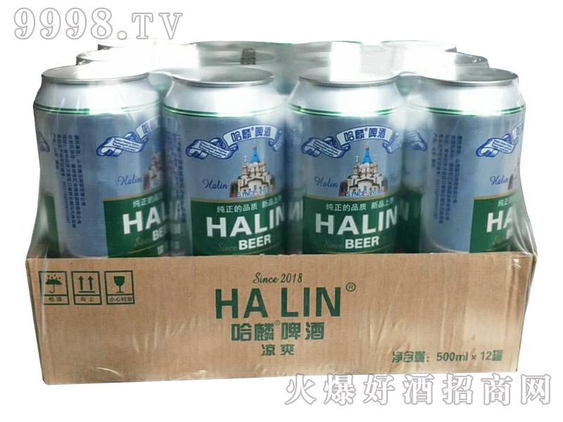 哈麟特制啤酒500ml×12罐