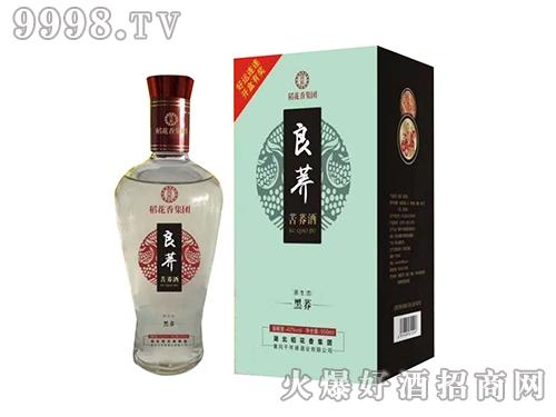 稻花香苦荞酒黑荞-白酒招商信息