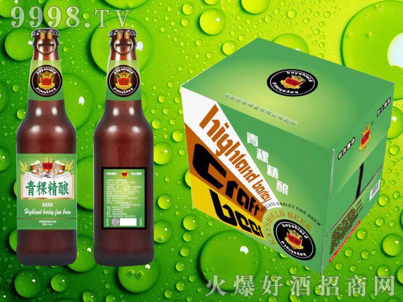 青稞精酿啤酒系列