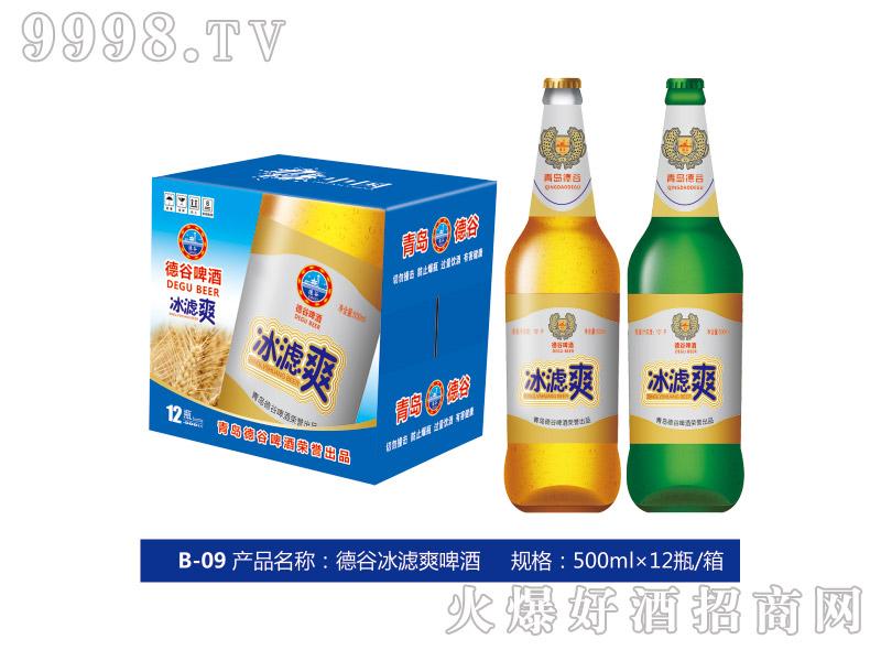 德谷冰滤爽啤酒500ml×12瓶