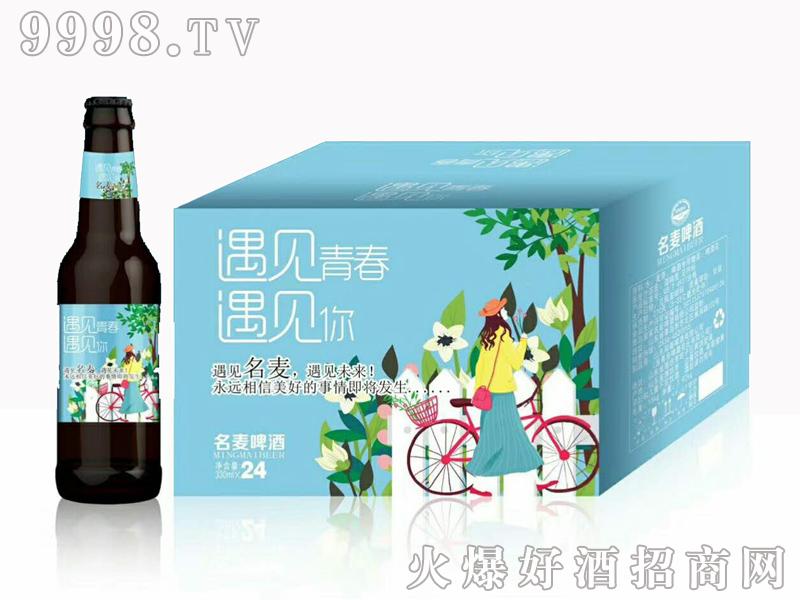 名麦啤酒遇见系列330mlx24