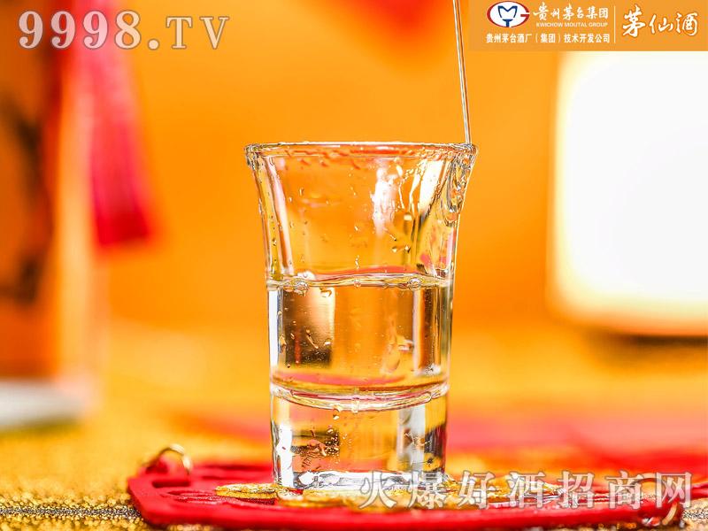 茅仙酒・醇香(酒杯)-白酒招商信息