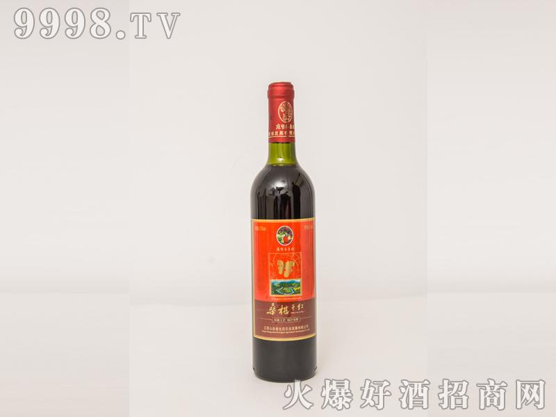 男士半干型桑葚酒12度