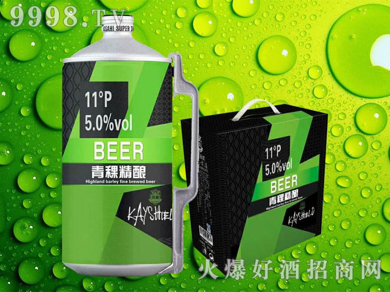 青稞精酿啤酒11°P