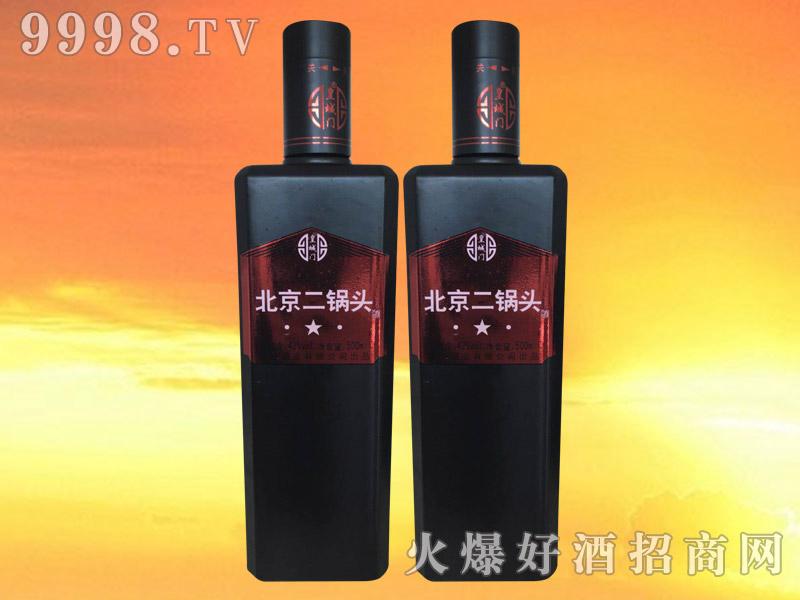 皇城门北京二锅头酒500ml