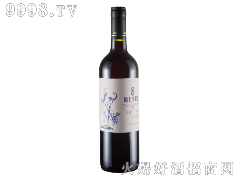 智利-牧师美乐干红葡萄酒