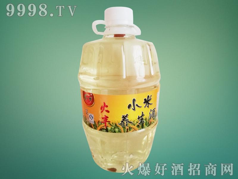 火丰小米养生酒1L-白酒招商信息