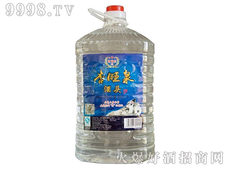 杏旺泉酒头酒56°5L