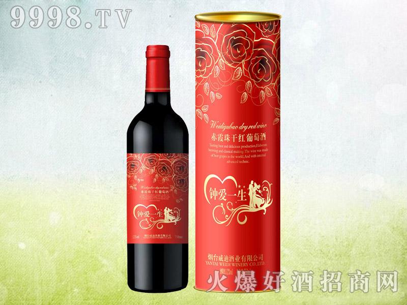 钟爱一生赤霞珠干红葡萄酒