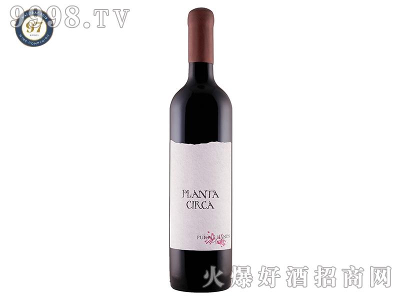 紫手普兰塔1880老藤赤霞珠干红葡萄酒