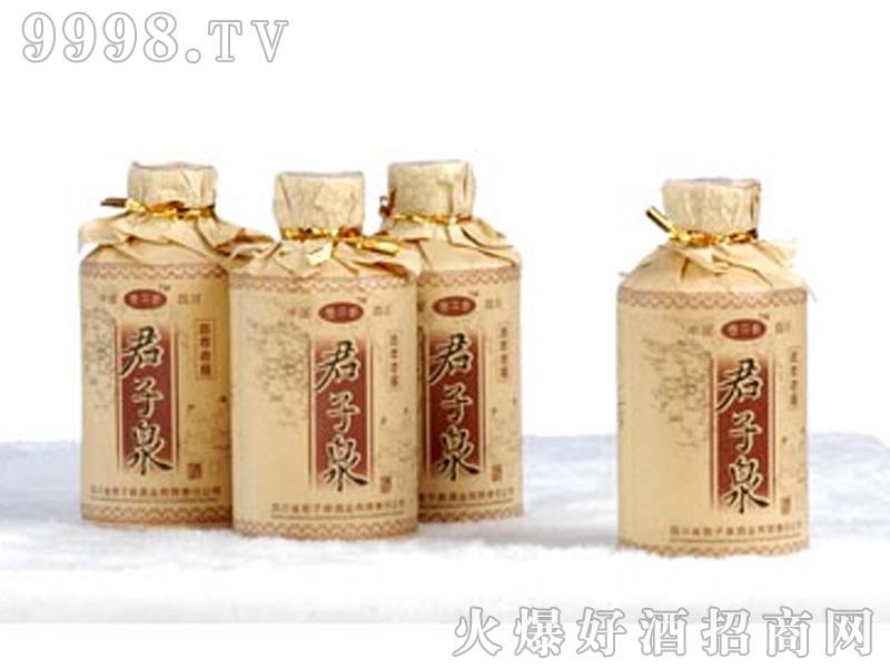 君子泉陈年老窖48%vol125ml