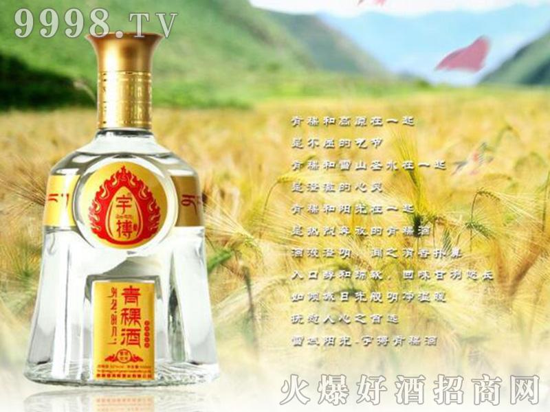 西藏宇博青稞酒(雪域阳光)52°500ml浓香型