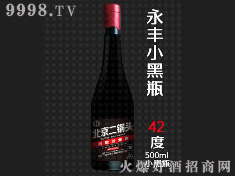 永丰二锅头小黑瓶42°500ml