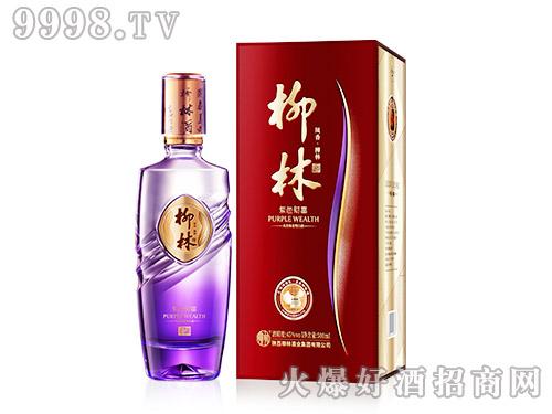 柳林酒紫色财富45°500ml凤香绵柔型白酒