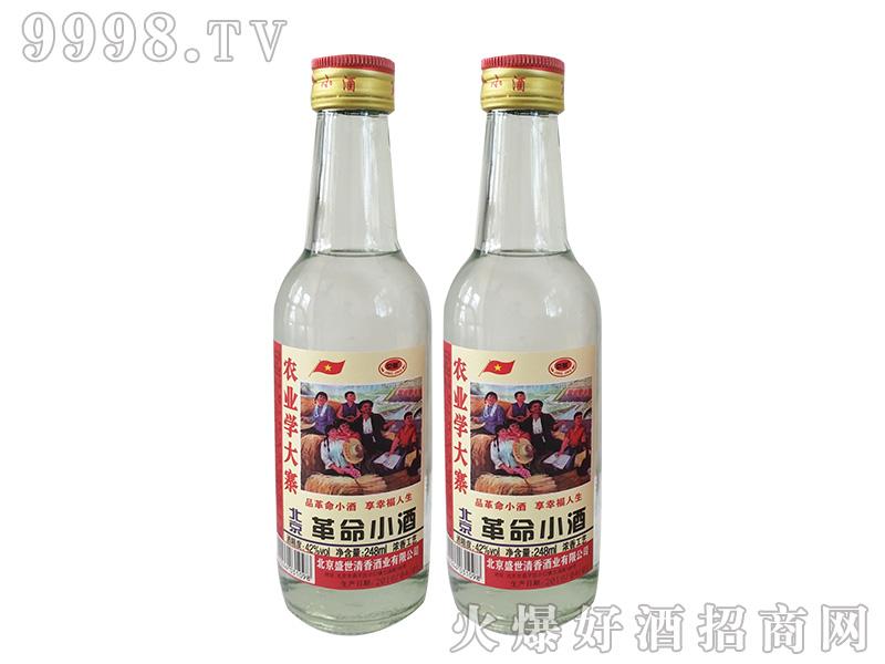 革命小酒2480ml-42%vol浓香型白酒
