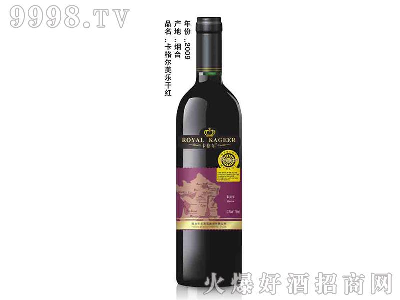 卡格尔美乐干红葡萄酒750ml2009