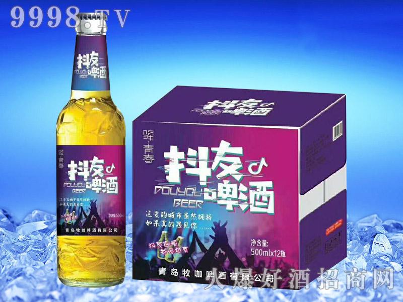 抖友啤酒500ml×12瓶
