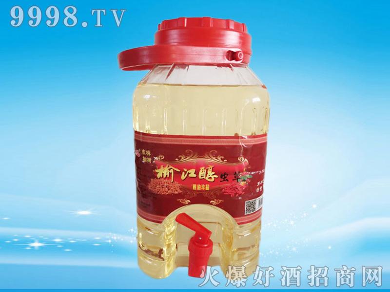 榆江春虫草酒(14)