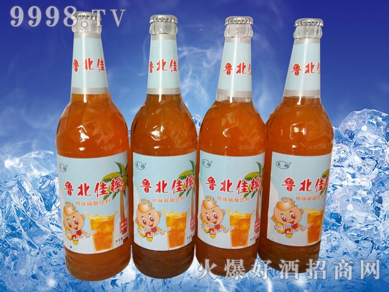 龙励鲁北佳槟橙味碳酸饮料