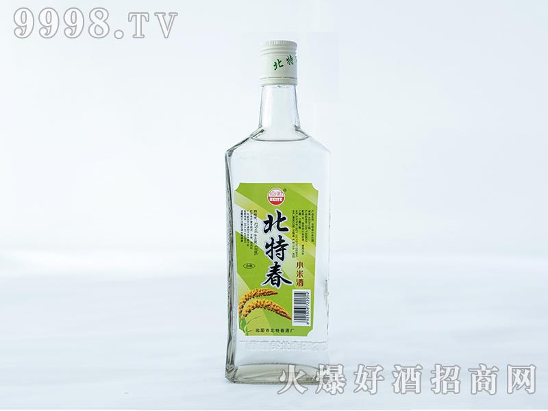 北特春小米-酒绿标