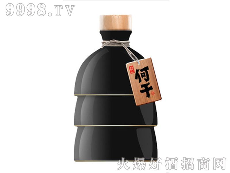 何干52°浓香型白酒x450ml(古典黑)