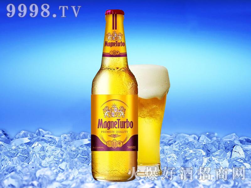 至尊津江啤酒-500ml-啤酒招商信息