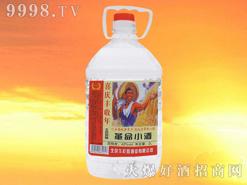 革命小酒42°2L