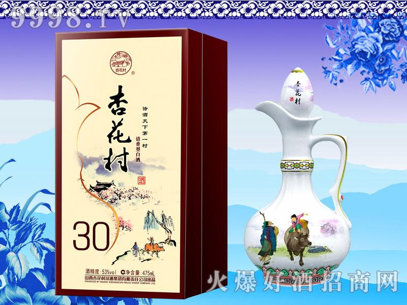 杏花村酒30