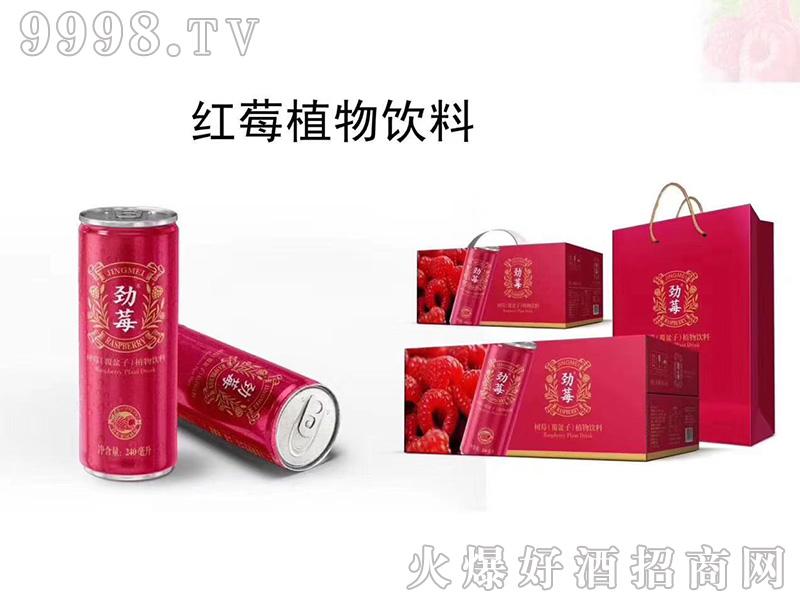 红梅植物饮料