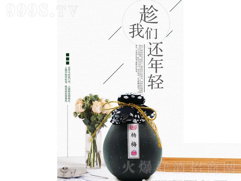 黄氏杨梅酒【12°300ml】