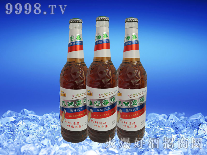 佳尚佳槟果味啤酒580ml