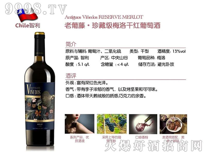 老葡藤.珍藏级梅洛干红葡萄酒-红酒招商信息