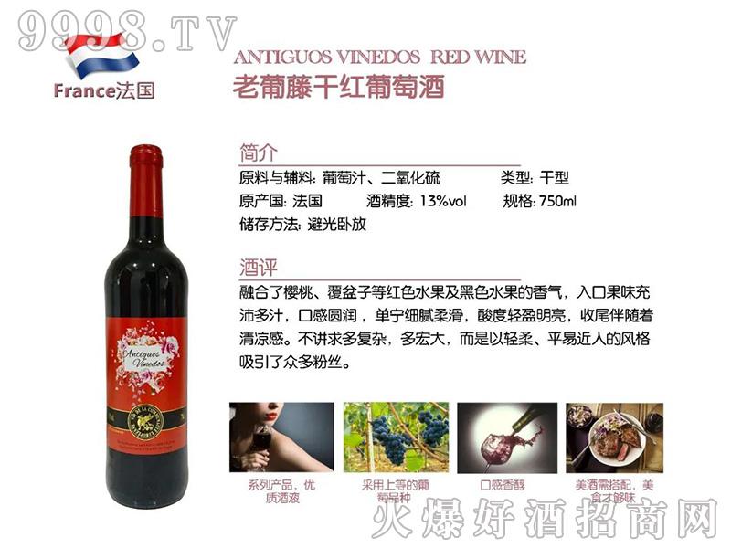 老葡藤干红葡萄酒-红酒招商信息
