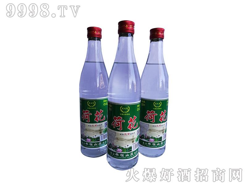 荷花酒42度500ml浓香型白酒