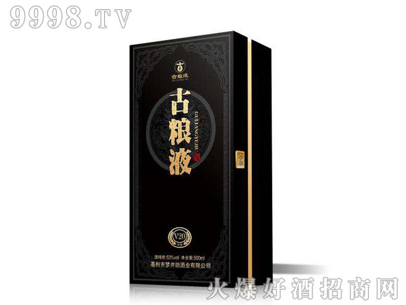 古粮液酒V20·53°500ml浓香型白酒