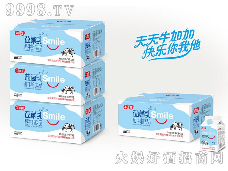 牛加加益菌乳酸牛奶原味458g×12盒