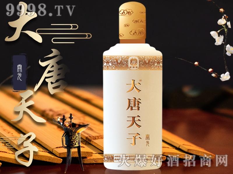 大唐天子酒开元53°500ml酱香型白酒-白酒类信息