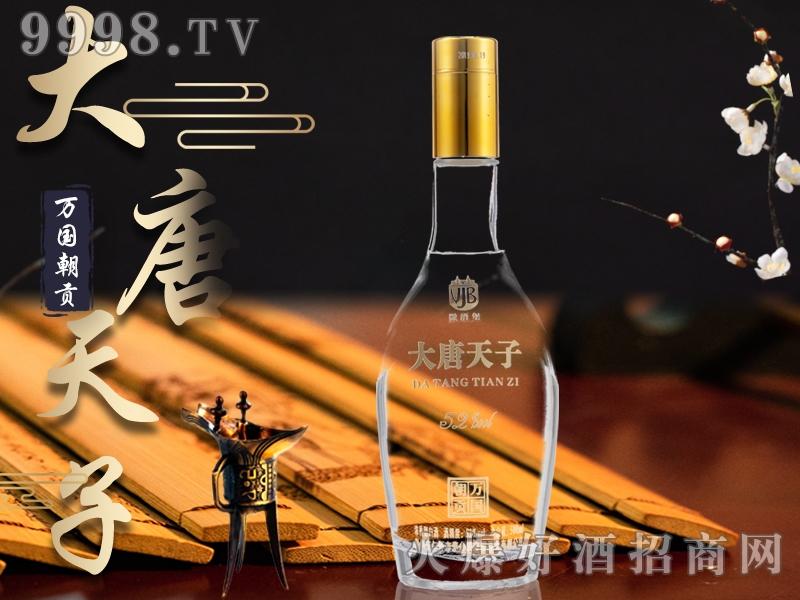 大唐天子酒万国朝贡52°500ml浓香型白酒-白酒类信息
