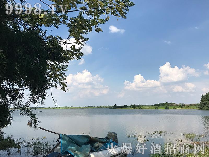 江西饶州酒业有限责任公司新厂展示