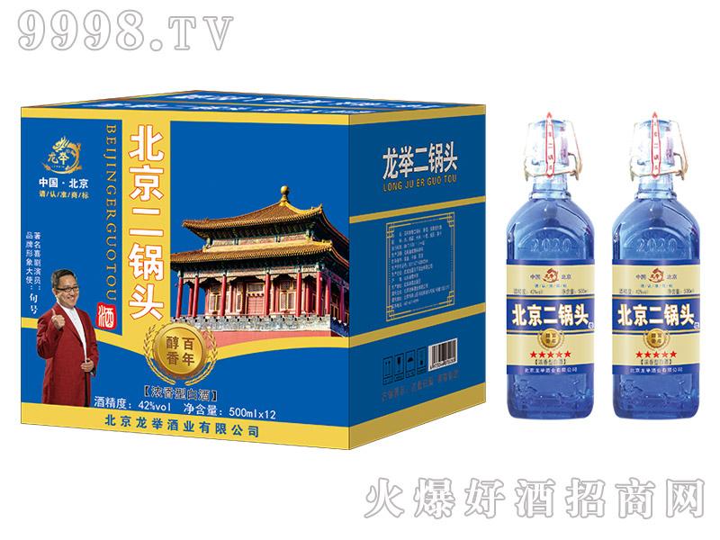 龙举北京二锅头酒百年醇香浓香型白酒【42°500ml】