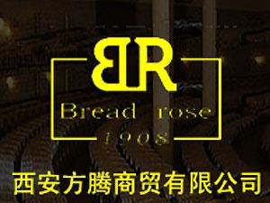 西安方腾商贸有限公司
